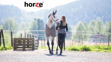 Photo of Find lækkert rideudstyr til gode priser