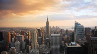 Photo of For meget storby? Find et afbræk her